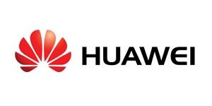 Huawei_300